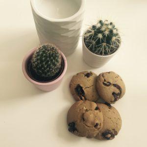 Cookies aux Cranberrys